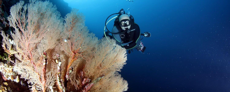 scuba-travel-insurance